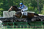 15 May 2010: Daylight Fire and Jeff Murphy win the Malvern Hill hurdle at Strawberry Hill Races in New Kent, Va. Daylight Fire is owned by Falcon Racing and trained by Donald Yovanovich