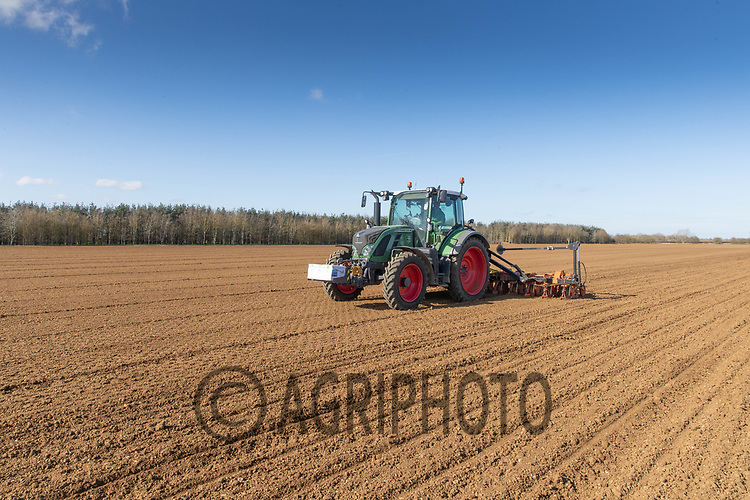 29-3--2021 Drilling sugar beet in Lincolnshire <br /> ©Tim Scrivener Photographer 07850 303986<br />      ....Covering Agriculture In The UK....