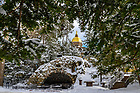 February 16, 2021; Grotto in winter, 2021 (Photo by Matt Cashore/University of Notre Dame)