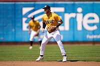 Erie SeaWolves shortstop Andrew Navigato (1) during a game against the Harrisburg Senators on September 5, 2021 at UPMC Park in Erie, Pennsylvania.  (Mike Janes/Four Seam Images)