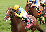Dayatthespa and Javier Castellano win the 29th running of the Queen Elizabeth 2 Challenge Cup, Grade 1 $400,000 at Keeneland Racecourse.  October 13, 2012.