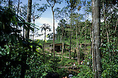Puraquequara, Amazon, Brazil. Well-built rural settler's house in bright sunshine.