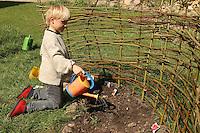 Junge, Kind legt sein eigenes kleines Gemüsebeet an, frisch eingesätes Gemüse wird gegossen, abgegrent durch einen Weidenzaun aus Weidenzweigen, Beet, Garten