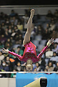 66th All Japan Gymnastics Championship