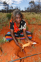 Audrey Martin, as we were harvesting the honey ants' nest, threw her burrowing stick at a lizard. The scene played out in a few seconds despite the outside temperature of 40°. This 59-year-old Aborigine woman threw the stick and began digging up a rabbit hole where the reptile went to hide, triumphantly dragging the lizard out and finishing it off.///Audrey Martin pendant notre récolte de fourmis à miel a lancé son bâton fouisseur contre un lézard. La scène s'est déroulée en quelques secondes malgré la température extérieure de plus de 40 °. Cette femme aborigène de 59 ans lance le bâton, courre rapidement dans le bush et se met à creuser un terrier ou le reptile s'est réfugié pour sortir triomphalement le lézard qui est achevé.