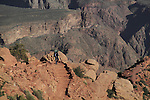 Backpacker hiking down the South Kaibab Trail to Cedar Ridge, to the Colorado River and Phantom Ranch Campground, Grand Canyon, northern Arizona, USA . John offers private photo tours in Grand Canyon National Park and throughout Arizona, Utah and Colorado. Year-round.