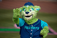Lynchburg Hillcats mascot Southpaw during the first game of a doubleheader against the Potomac Nationals on June 9, 2018 at Calvin Falwell Field in Lynchburg, Virginia.  Lynchburg defeated Potomac 5-3.  (Mike Janes/Four Seam Images)