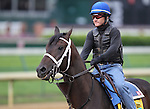 Soldat, trained by Kiaran McLaughlin,  exercises in preparation for the 137th running of the Kentucky Derby at Churchill Downs in Louisville, Kentucky to be run May 7, 2011.