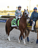 HALLANDALE FL - JANUARY 28: Victor Espinoza atop California Chrome reacts after The Inaugural $12 Million Pegasus World Cup Invitational, The World's Richest Thoroughbred Horse Race At Gulfstream Park on January 28, 2017 in Hallandale, Florida.<br /> <br /> People:  California Chrome, Victor Espinoza