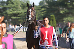 August 2, 2015. Upstart, trained by Richard Violette, Jr., walks to the paddock before the  Grade I William Hill Haskell Invitational Stakes, one and 1/8 miles on the dirt  for three year olds at Monmouth Park in Oceanport, NJ.  Joan Fairman Kanes/ESW/CSM