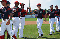 Batavia Muckdogs pitchers Shane Sawczak (33) and Javier Garcia (36) high five teammates Javier Lopez (23) and Victor Delgado (27) after a game against the Staten Island Yankees on August 28, 2016 at Dwyer Stadium in Batavia, New York.  Batavia defeated Staten Island 6-0. (Mike Janes/Four Seam Images)