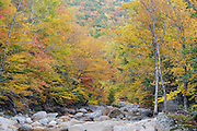 Autumn foliage along the Ellis River in Jackson, New Hampshire during the autumn months.