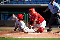 Clearwater Threshers catcher Deivi Grullon (13) puts a tag on a runner sliding into home plate during the first game of a doubleheader against the Palm Beach Cardinals on April 13, 2017 at Spectrum Field in Clearwater, Florida.  Clearwater defeated Palm Beach 1-0.  (Mike Janes/Four Seam Images)