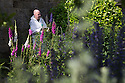 07/07/15<br /> <br /> Head Gardener, Trevor Jones, inspects deadly Monkshood/Aconitum next to poisonous Foxgloves with Viper's Bugloss also known as Ironweed or Bluebottle/Echium vulgare in the foreground.<br /> <br /> The Poison Garden, Alnwick Garden.<br /> <br /> All Rights Reserved: F Stop Press Ltd. +44(0)1335 418629   www.fstoppress.com.