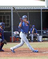 Matt Mervis - 2020 AIL Cubs (Bill Mitchell)