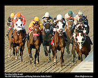 As seen in the Arabian Horse Galleries exhibit at The Kentucky Horse Park<br /> <br /> Fryvolous .The 2007 UAE Equestrian and Racing Federation Stakes Grade 1