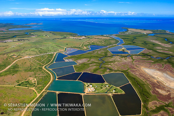 Bassins d'élevage de crevettes à Koné, Nouvelle-Calédonie