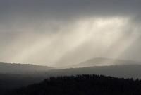 Bergkammen onder de regenbuien, Grampiums National Park, Victoria, Australia