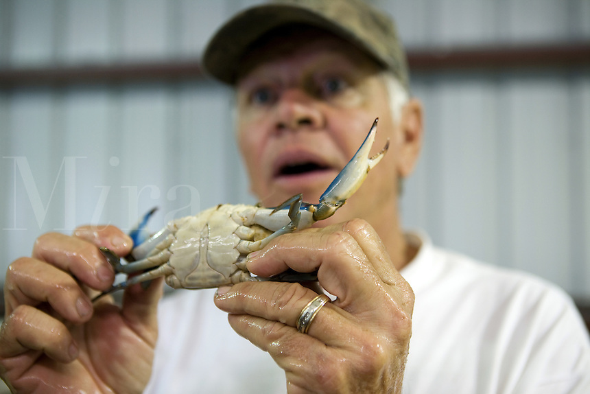 Richard Smith Crab Fisherman