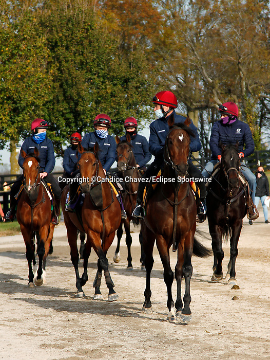 Order Of Australia,Circus Maximus, Mogul, Lope Y Fernandez, Magical and Peaceful, trained by trainer Aidan P. O'Brien, exercises in preparation for the Breeders' Cup Filly & Mare Turf at Keeneland Racetrack in Lexington, Kentucky on November 5, 2020.