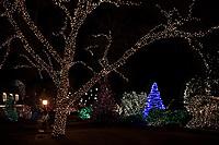PIC_2198-NEW HOPE CHRISTMAS LIGHTS 1-18