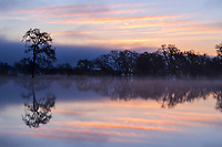 Dawn lights up the sky over a flooded plains in the Laguna di Santa Rosa watershed, Sonoma county, California.