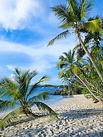 Salomon Beach.Virgin Islands National Park.St. John, US Virgin Islands