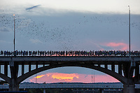 Austin, Texas – Crowds gather nightly to watch 1.5 million Mexican free-tailed bats shoot out from under the Congress Avenue Bridge. Standing atop the bridge, or down below (wear a hat), visitors provide condemned mosquitoes a last meal while waiting for the bats to make their entrance.