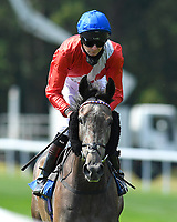 Indie Angel ridden by Robert Havlin goes down to the start  of The AJN Steelstock Steel Processors British EBF Fillies' Handicap   during Horse Racing at Salisbury Racecourse on 9th August 2020