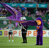 27th March 2021; HBF Park, Perth, Western Australia, Australia; A League Football, Perth Glory versus Newcastle Jets; Perth Glorie's mascot waves the flag before the start of the match