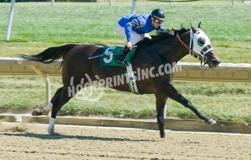 Paperless winning at Delaware Park on 9/15/10