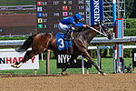 July 24,2020: Cerretalto ridden by Luis Saezr wins the 8th race on Quick Call day at Saratoga Race Course in Saratoga Springs, New York. Rob Simmons/Eclipse Sportswire/CSM