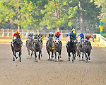 Rafael Bejarano and Secret Circle (left) charged from the outside edging Optimizer (second from left) to win the 52nd running of the Rebel Stakes at Oaklawn Park Saturday afternoon in Hot Springs.