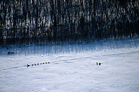 Aerial View of Video Crew Photographing Kjetil Backen<br /> Near Ruby 2004 Iditarod