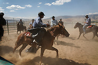 Inmates ride wild horses in circles attempting to help them adjust to the unexpected and unknown without spooking. Mustangs are gentled at the Warm Springs Correctional Center, a minimum security prison.  <br /> Hank Curry has run the horse training program for 5 years.  He has selected 500 horses, only 5 had to be returned.  Many have been adopted and are ridden.  <br /> The horses and inmates learn life lessons.