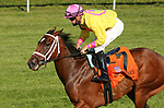 "Octover 07, 2020 : #7 Aunt Pearl (IRE) and jockey Florent Geroux win the 30th running of the JPMorgan Chase Jessamine Grade 2 $150,000 ""Win and You're In Juvenile Fillies Turf Division"" for trainer Brad Cox at Keeneland Racecourse in Lexington, KY on October 07, 2020.  Candice Chavez/ESW/CSM"