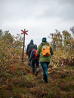 Nykterhetsrörelsens scoutförbunds Rixhajk 2019