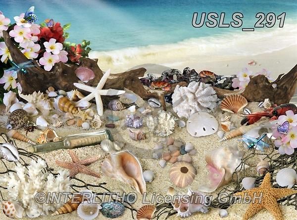 Lori, LANDSCAPES, LANDSCHAFTEN, PAISAJES, paintings+++++Seashells By The Seashore_72,USLS291,#l#, EVERYDAY ,puzzle,puzzles