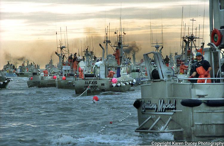 Gillnet fishing boats fish for sockeye salmon on the North Line fishing boundary of Egegik River in Bristol Bay, Alaska in July 1996.