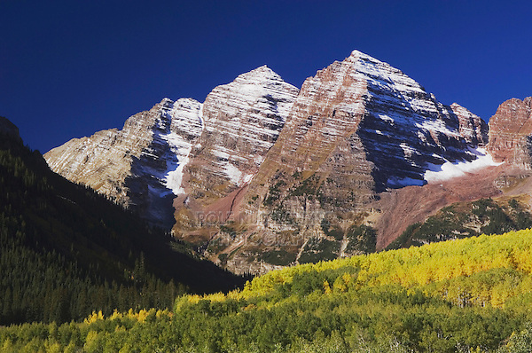Maroon Bells and Aspen trees with fall colors, Aspen, White River National Forest, Colorado, USA