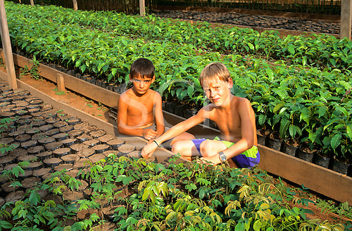 Juruena, Mato Grosso State, Brazil. Two boys with tree seedlings for a reforestation project in the Amazon rainforest.