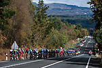 The peloton in action during Stage 14 of the Vuelta Espana 2020, running 204.7km from Lugo to Ourense, Spain. 4th November 2020. <br /> Picture: Unipublic/Charly Lopez | Cyclefile<br /> <br /> All photos usage must carry mandatory copyright credit (© Cyclefile | Unipublic/Charly Lopez)