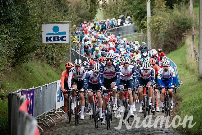 peloton driven by Team trek-Segafredo up the first passage of the Oude Kwaremont<br /> <br /> 104th Ronde van Vlaanderen 2020 (1.UWT)<br /> 1 day race from Antwerpen to Oudenaarde (BEL/243km) <br /> <br /> ©kramon