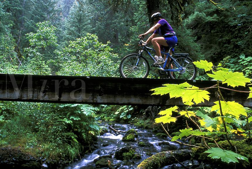 Mountain Biking on Resurrection River Trail.  Chugach National Forest, Kenai Peninsula, Alaska.  MR