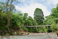 Log bridge over the Meleotigi River, near the village of Eraulo in the Ermera District of Timor-Leste (East Timor).