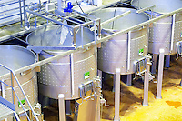 Fermentation tanks. Mechanical pigeur, for pushing down the cap, pigeage. Henrque HM Uva, Herdade da Mingorra, Alentejo, Portugal