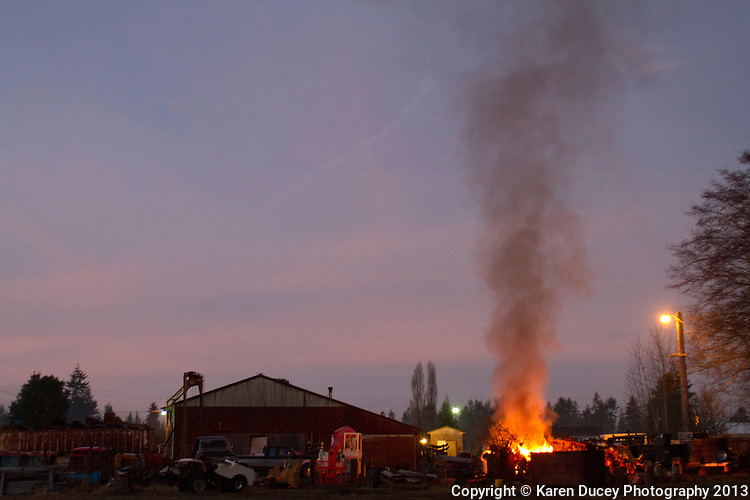 A large fire at Wilder Trucking company on Russell Road, a property neighboring the Olympic Animal Sanctuary, cuts through through the fog at twilight on Monday evening December 16, 2013 in Forks, WA. The person operating the Bobcat said they were burning wet wood.<br /> <br /> Owner Steve Markwell Markwell has been under fire for neglecting the dogs after volunteers filed a complaint in 2012. The City of Forks police department investigated and found horrific conditions but said legally they were unable to do anything about it. Markwell claims he has 125 dogs inside and believes he is their last hope.  Many of the dogs were turned over to him by rescues and shelters who deemed them dangerous. Mounting evidence of animal cruelty has prompted many of them to ask for their dogs back.  Markwell refuses and only lets a few trusted volunteers enter the premises.