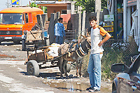 Street scene with a young man standing next to a cart drawn by an ass donkey. Shkodra. Albania, Balkan, Europe.