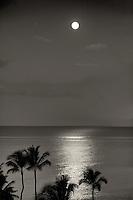 Moon setting over ocean with palm trees. Maui, Hawaii