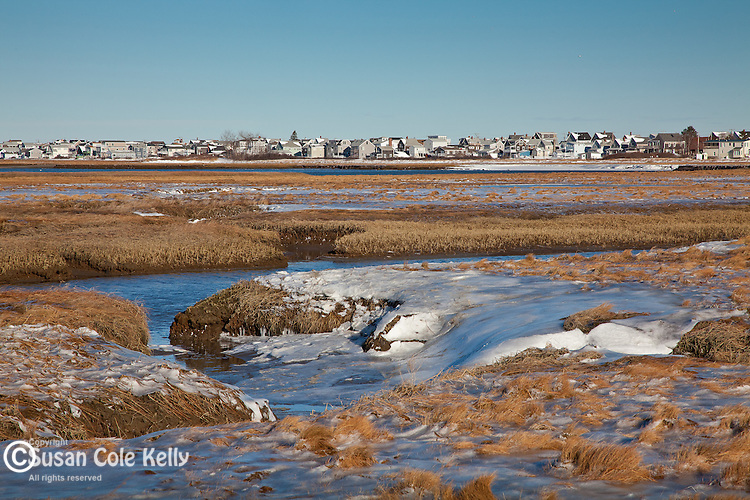 Frozen saltmarsh at the Rachel Carson National Wildlife Refuge in Wells, ME, USA